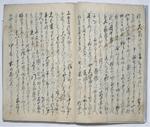 『大地震難渋日記』